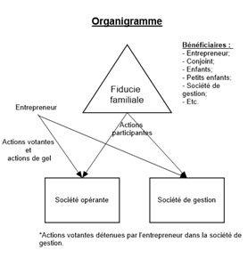 Organigramme DGC